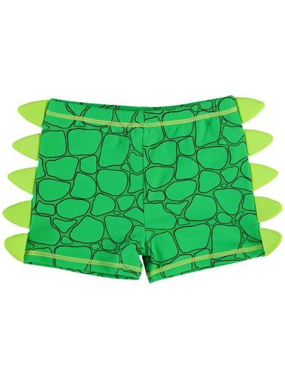 Boys Dino Swim Trunk