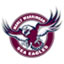 Manly Sea Eagles