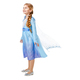 Toddler Girls Anna And Elsa Frozen Costumes