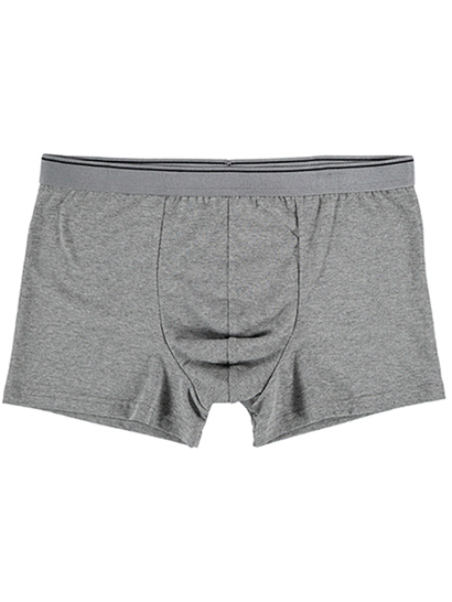 MENS TRUNK-GREY WITH BLACK LINE