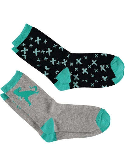 Boys 2 Pack Crew Fashion Sock