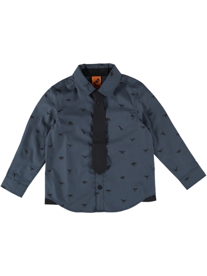 50412db6188 Boys Long Sleeve Shirt With Tie