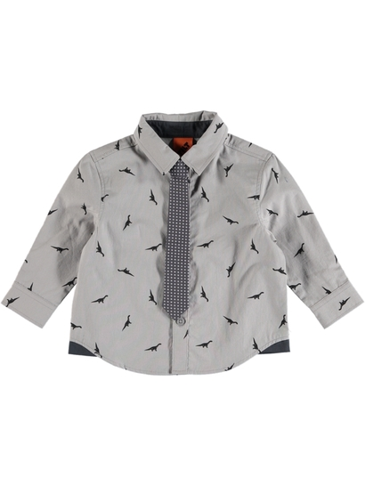 Boys Long Sleeve Woven Shirt And Tie